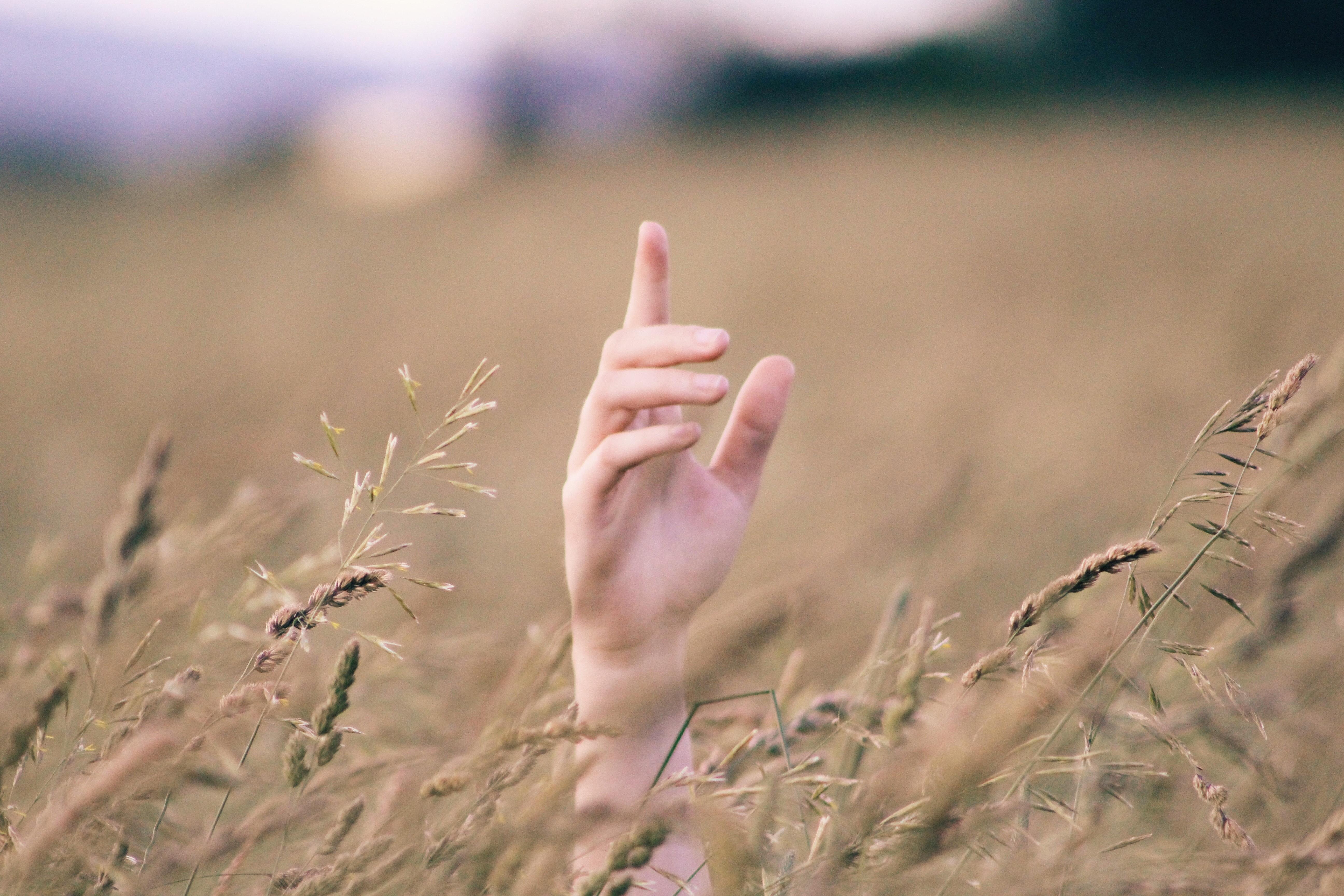 手コキが得意な女性の画像