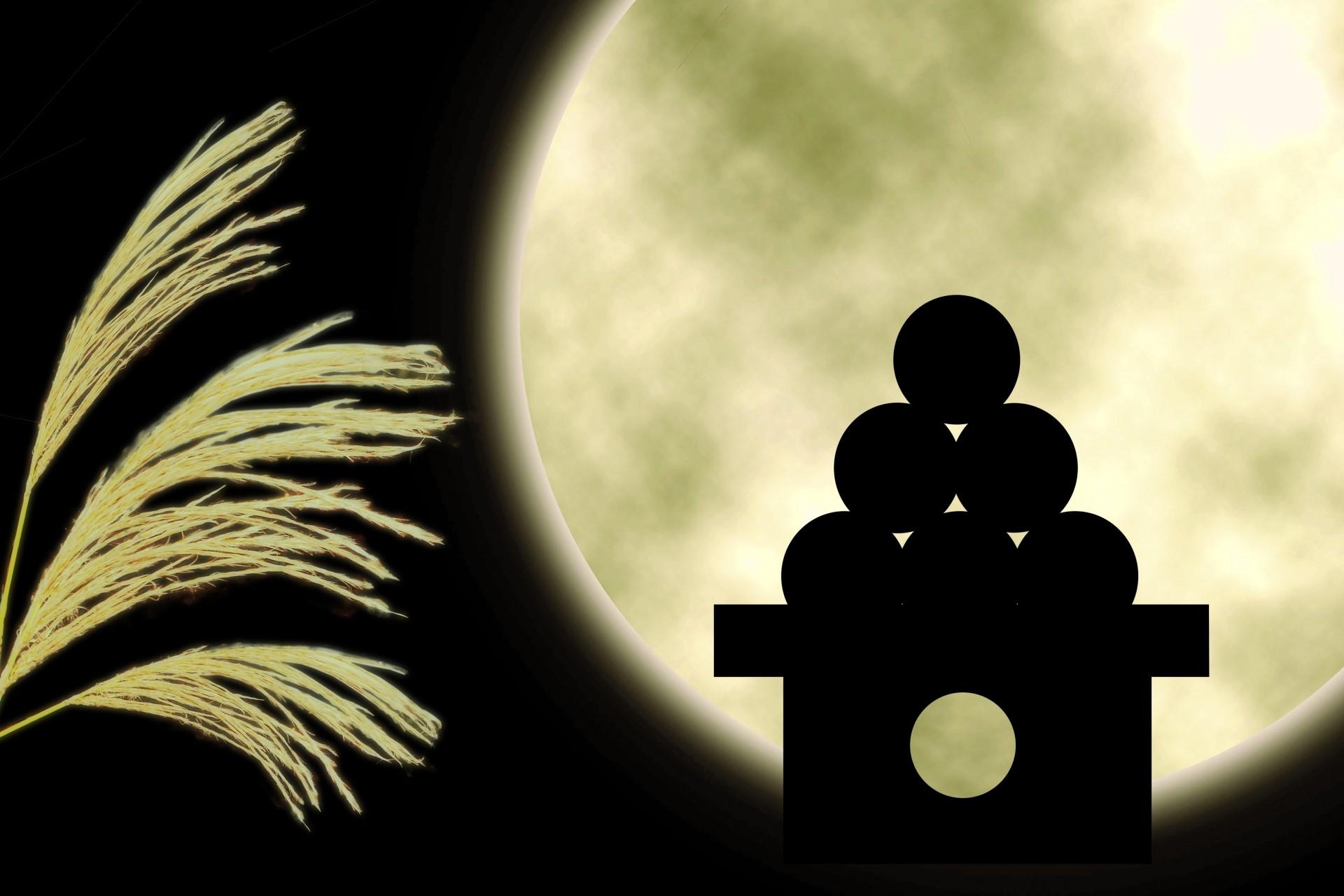 栗名月とも呼ばれる十三夜に栗ごはんのレシピ
