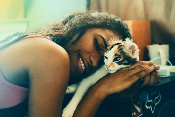三毛猫を抱きしめてうっとりと愛でる女性の画像