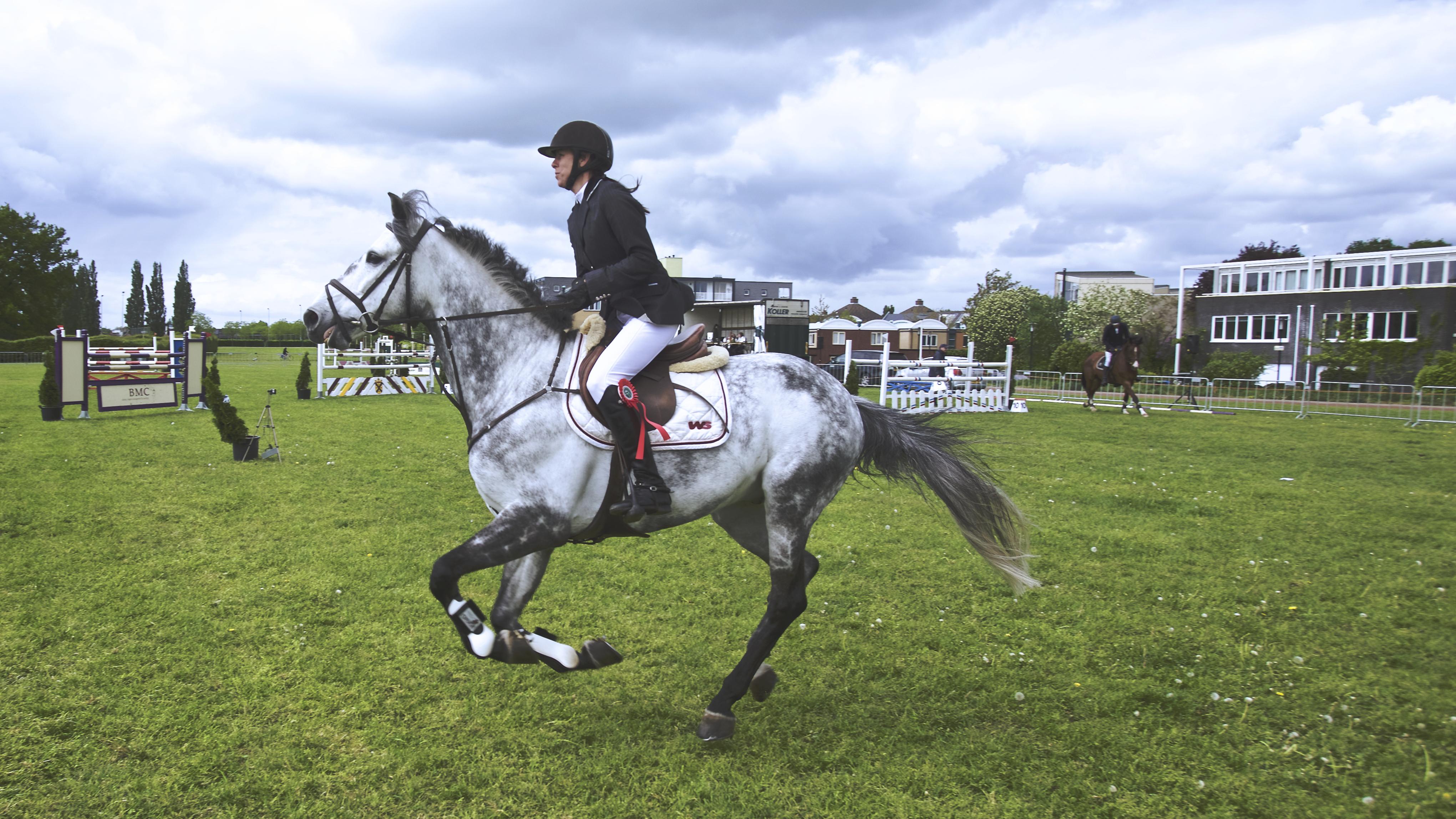 馬にまたがる女性の画像