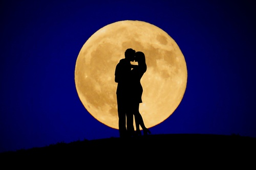 太田みおの新月の滋味ごはんの画像